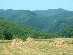 Kilátás a Lusta-völgyre